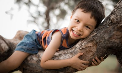 Richard O'Leary says children should be able to climb trees