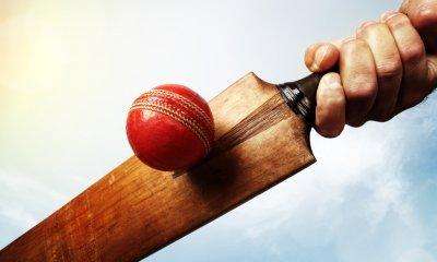 Australian summer means cricket