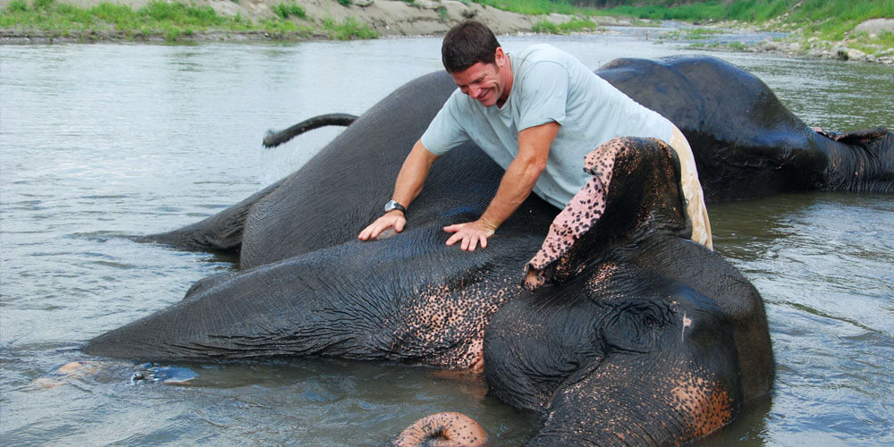 Why Deadly 60 S Steve Backshall Is A Hero To Millions Of Kids My Weekly Preview