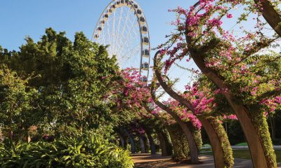 Feel like a change of scene? Book a weekend escape to Brisbane and base yourself at South Bank, where food, art and entertainment galore is right on your doorstep.