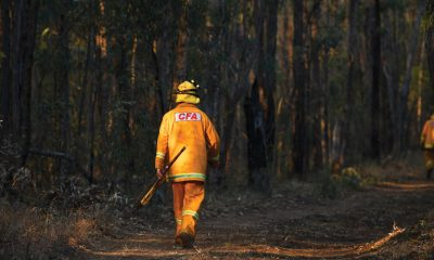 Low rainfall, drought and tinderbox bushland conditions have combined to create devastating bushfires in several Australian states. Experts are again calling on all levels of government to put in place policies to deal with current and future catastrophes.